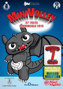 FESTA PROV. DEL MINIVOLLEY - 07-06-2015 Marano Vicentino